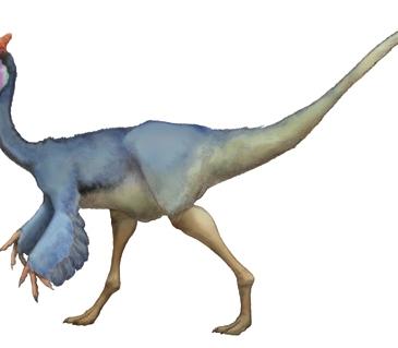 Pelecanimimus, according to Dinopedia Fandom!